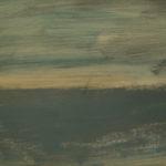 2016 Il filo dell'acqua 5- Arno furioso 1