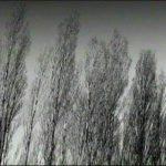 Sentieri sotto la neve 10